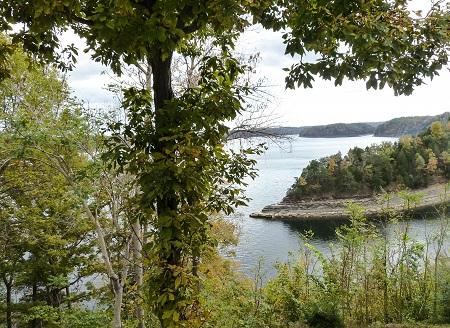 Fixing to-Lake Cumberland view